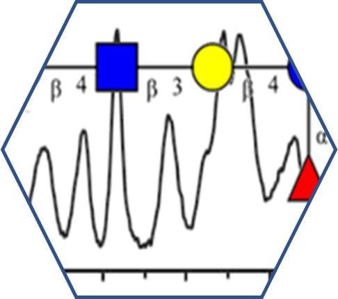 NMRcarb-DB